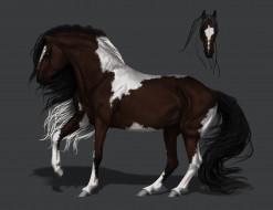 рисованное, животные,  лошади, фон, грива, конь