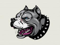 angry dog, злой пес, арт, ошейник с шипами, Питбуль, аватарка, Pitbull