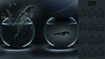 аквариум, дельфин