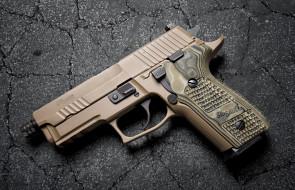 sig sauer p229 scorpion, оружие, пистолеты, ствол