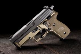 sig sauer p229 combat, оружие, пистолеты, ствол