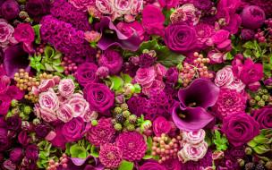 цветы, разные вместе, roses, purple, romantic, pink, бутоны, розовые, розы, flowers, beautiful