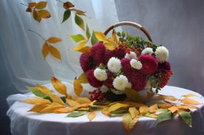 цветы, букеты,  композиции, астры, рябина, листья, осень