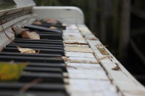 клавиши, пианино