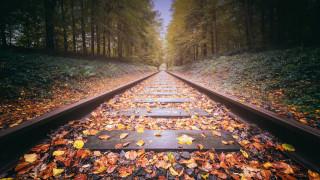рельсы, железная дорога, шпалы, листья, осень