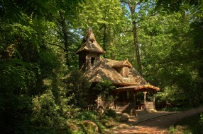 города, - здания,  дома, лес