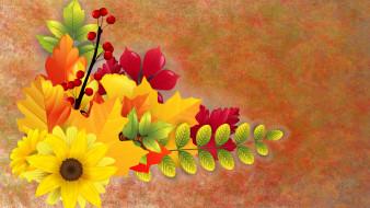 цветы, фон, листья