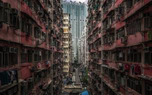 Urban jungle, Wan Chai, Hong Kong