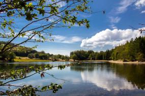отражение, река, лето