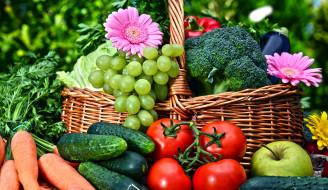 брокколи, виноград, огурцы, помидоры, морковь