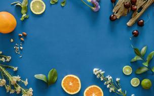 фон, апельсин, лайм, фрукты, дольки, синий, вишня, цветы