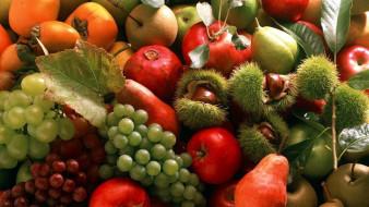 каштаны, яблоки, гранат, хурма, виноград, груши