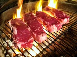 гриль, мясо, барбекю