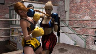 взгляд, девушки, бокс, фон, ринг