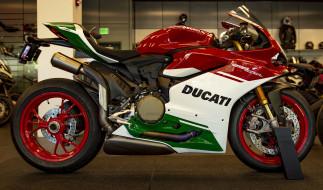 ducati 3582, мотоциклы, ducati, байк
