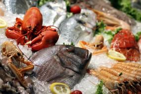 креветки, краб, рыба