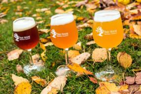 листья, ассорти, пена, пиво, осень, бокал