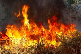 пожар, пламя