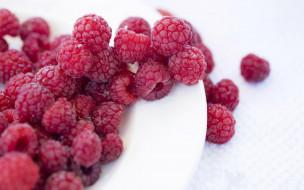 ягоды, малина, спелая