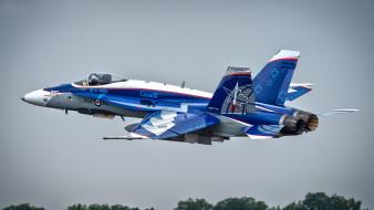 mcdonnell douglas cf-188 hornet, авиация, боевые самолёты, истребитель