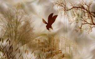 разное, компьютерный дизайн, камыши, деревья, орел, лестница