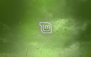 цвет, фон, логотип