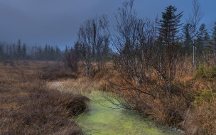 природа, осень, река