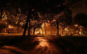 огни, пар, деревья
