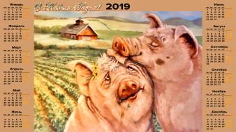поросенок, свинья, дом, ласка