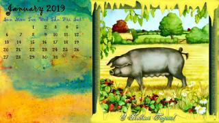 свинья, ягода, растения, природа, цветы