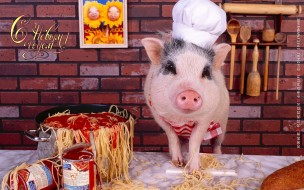 календари, праздники,  салюты, кухня, колпак, макароны, свинья, поросенок