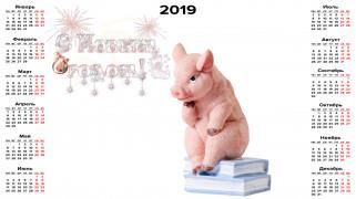 календари, праздники,  салюты, свинья, хряк, книга, поросенок