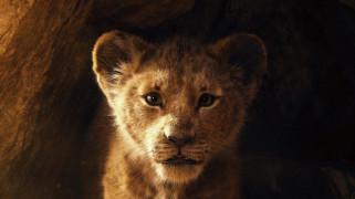 драма, приключения, мюзикл, 2019, король лев, the lion king