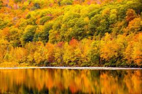 река, осень, отражение