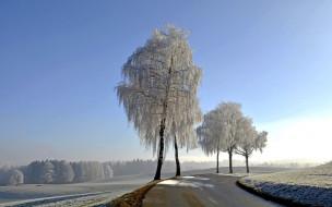снег, деревья, зима, шоссе