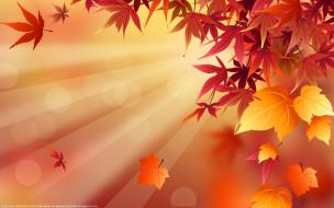 векторная графика, природа , nature, осень, листья