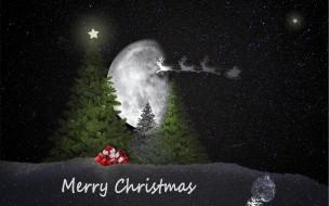 праздничные, - разное , новый год, ели, ночь, олени, подарки
