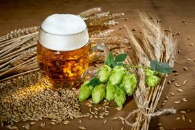 бокал, пиво, пена, хмель