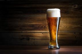 пиво, пена, бокал