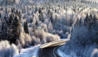 шоссе, дорога, зима