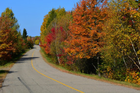 шоссе, дорога, осень