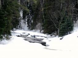 природа, зима, снег