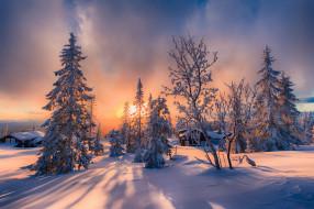природа, дома, ели, пейзаж, деревья, снег, солнце, зима