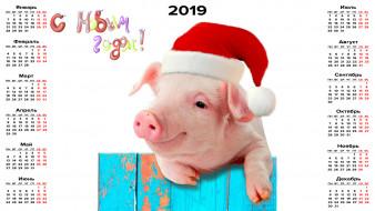 поросенок, шапка, свинья