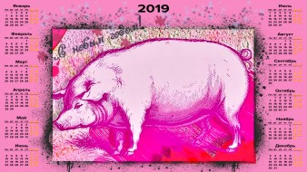календари, праздники,  салюты, поросенок, хряк, свинья