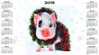 календари, праздники,  салюты, поросенок, свинья, мишура