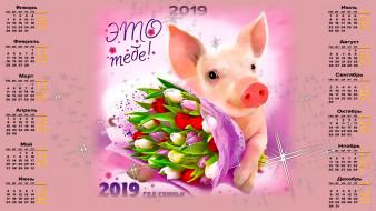 календари, праздники,  салюты, поросенок, букет, цветы, свинья