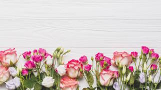 розы, эустома