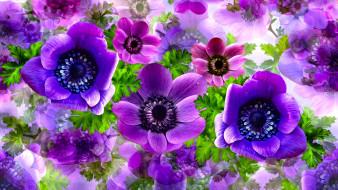 лепестки, цветы, фон
