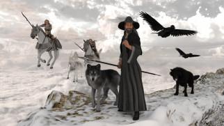 собака, взгляд, фон, девушки, лошади